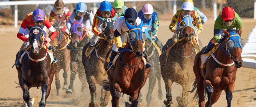 What's Behind the Decline in Horse Racing's Popularity?